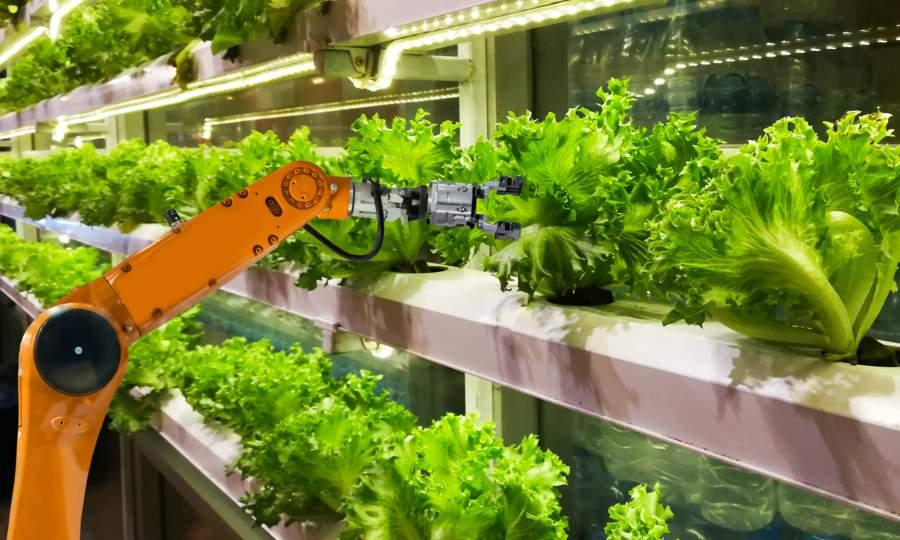 Robotic arm used in farming